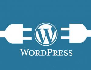 WordPress Eklenti Durdurma