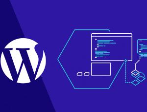WordPress Eklentileri Nasıl Seçilir?