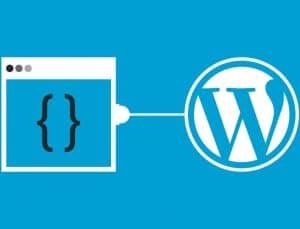 WordPress Güvenlik Rehberi