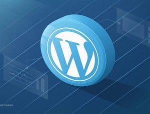 WordPress Hakkında Merak Edilenler