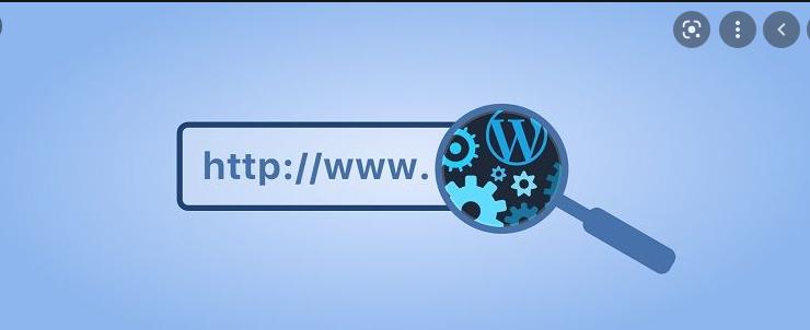 WordPress Tema İsmi Nasıl Öğrenilir? İstediğiniz Temanın İsmini Bulun!